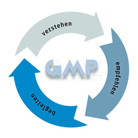 Prozessgrafik, gempex - the GMP Expert